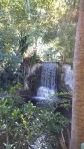 Waterfall in the Gardens